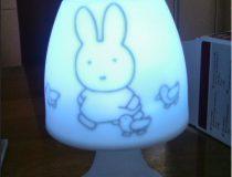 Lamp met naam en afbeelding